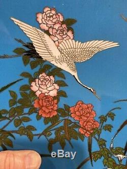 19th C. Japanese Cloisonne Enamel on Bronze 12 PLATE Stunning