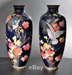 2 Japanese Cloisonné Enameled Birds Cobalt Vases, Meiji (1868-1912)