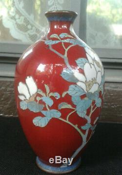 Antique 6 CAMELLIA Japanese MEIJI period Cloisonne Vase