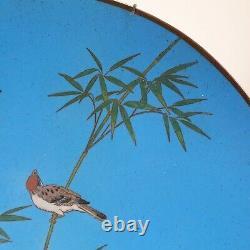 Beautiful Japanese 19th C Meiji Blue Ground Enamel Cloisonne Birds Charger