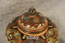 Fine Chinese Qing Cloisonne Ginger Jar Butterflies & Birds With Copper Dust 9cm
