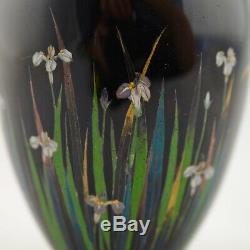 Meiji Japanese Cloisonne enamelled silver wire Iris vase by Hayashi Kodenji