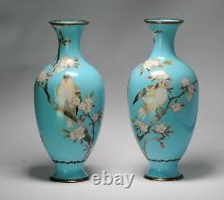 Pair Antique Bronze Vase Cloisonné Japan Meiji 19th century Japanese