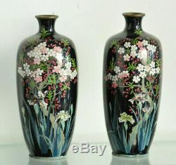 Paire de vases Japon Cloisonne enamel Meiji Japanese Vase Signed Mark Miwa Meiji