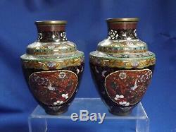 Pr. ANTIQUE JAPANESE MEIJI CLOISSONE 6 1/4H Vases Gold Stone Cranes & Butterfly