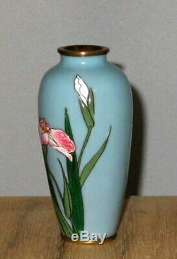 Rare Meiji Japanese Moriage Cloisonne Enamel Vase with Iris